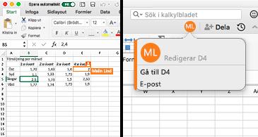 Kalkylblad som visar en cell med en orange kant på vänster sida och på höger sida en bubbla med en persons initialer samt koordinaterna för den markerade cellen som anger att de redigerar innehållet.