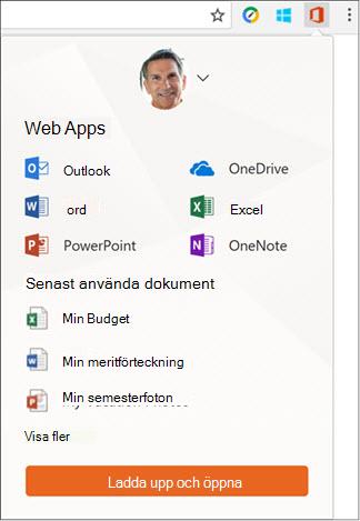 Klicka på Office Online-tillägget i Chrome-filtillägg för att öppna panelen Office Online.