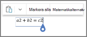 Med matematik alternativ för ekvationer