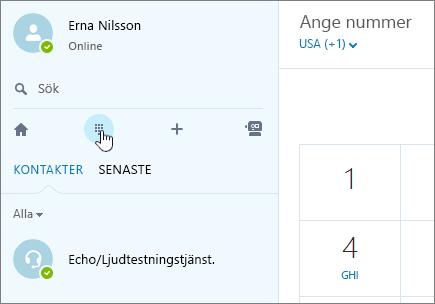Skärmbild som visar var du ringer ett samtal med Skype