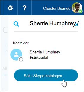 En skärmbild av sökrutan i Skype-fönstret