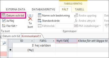 Lägga till datum/tid-fält i databladsvyn