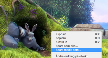 Bild som innehåller en bild, och där kommandot Spara som bild är markerat på snabbmenyn