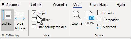 Linjalens inställning på fliken Visa