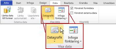Gruppen Visa data på fliken Data i menyfliksområdet i Visio 2010.