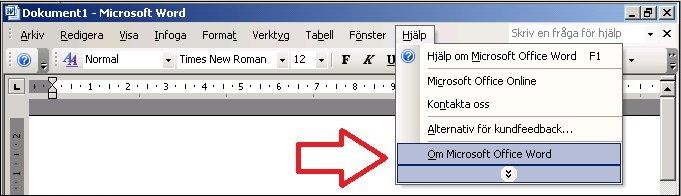 Word 2003 Hjälp, Om