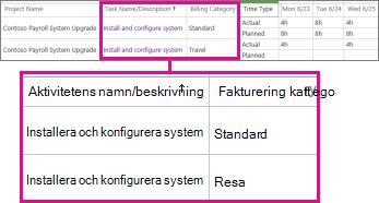 Två tidrapportslinjer med olika kategorier