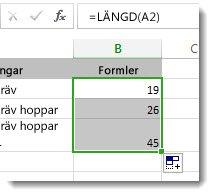 Ange flera LÄNGD-funktioner på ett kalkylblad