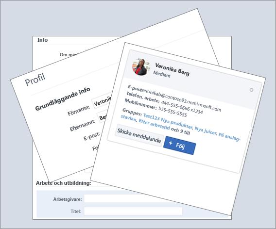 En sammansatt översikt över profilinformationen