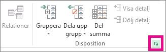 Klicka på dialogruteikonen i gruppen Disposition