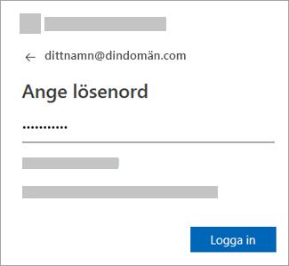Ange lösenordet för ditt e-postkonto.
