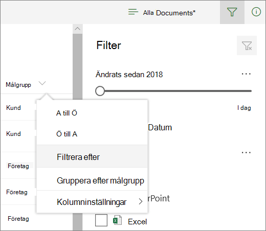 Klicka på Filtrera efter för att öppna filterpanelen