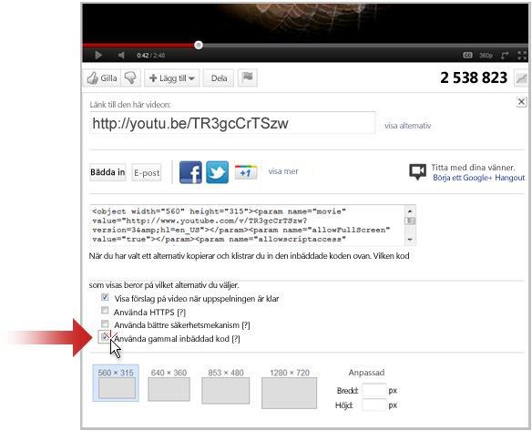 Länka till en video på YouTube