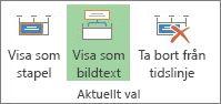 Knappen Visa som bildtext i Project
