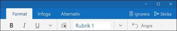 Fliken Format i e-postprogrammet för Outlook