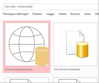 Knappen Anpassat webbprogram på startskärmen.