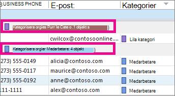 Sortera listan efter färg genom att klicka på kolumnrubriken Kategorier.