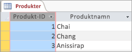 Skärmavsnitt av tabellen Produkter
