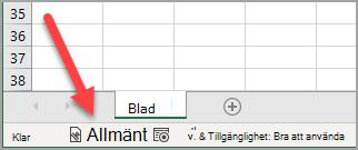 Statusfältet i Excel med känslighetsetiketten Allmänt har tillämpats