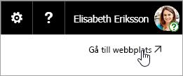 En skärmbild av knappen Gå till webbplats på OneDrive-webbplatsen.