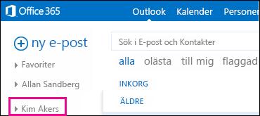 Den delade mappen visas i Outlook Web App