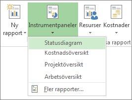 Menyn Instrumentpanel på fliken Rapport