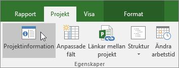 Projektinformation