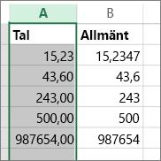 exempel på hur tal visas i olika format t.ex. Tal och Allmänt format.