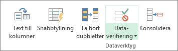 Dataverifiering finns i gruppen Dataverktyg på fliken Data