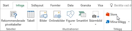 Skärmbild av en del av fliken Infoga i menyfliksområdet i Excel med en markör som pekar på Store. Markera lager för att gå till Office Store och Sök efter tillägg för Excel.