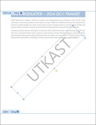 Bild av dokument med Utkast-vattenstämpel.