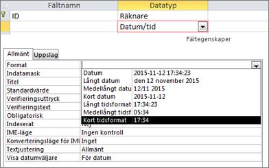 Egenskapen Format för ett datum- och tidsfält
