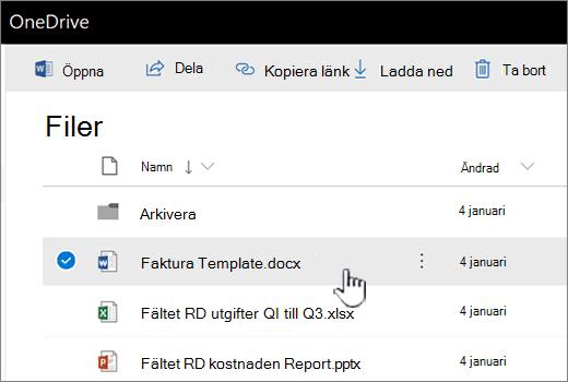 OneDrive med valda filen