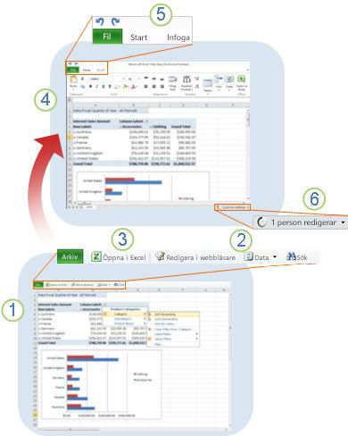 Excel Web App at a glance