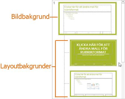 Bildbakgrund med layouter i bildbakgrundsvyn i PowerPoint