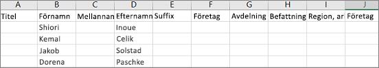 Exempel på en Outlook CSV-fil öppnad i Excel