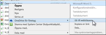 Visa en fil i en synkroniserad mapp i en webbläsare