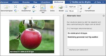Word-dokument med en bild och fönstret Alternativtext till höger