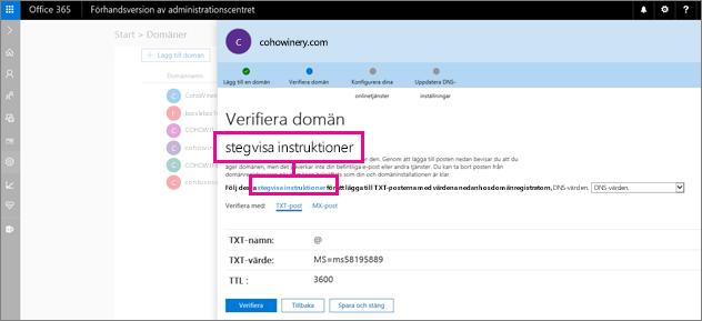 På sidan Verifiera följer du instruktionerna för att lägga till en TXT-post hos DNS-värden