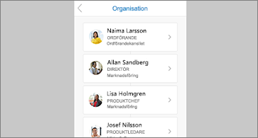 Organisationsschema för en markerad kontakt