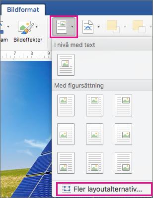 På fliken Bildformat är Position och Fler layoutalternativ markerade.