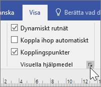 Skärmbild av alternativen för Visa med Dynamiskt rutnät och Kopplingspunkter valt