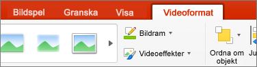 Visar fliken Videoformat i PowerPoint 2016 för Mac