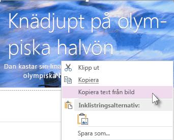 Bild på snabbmenyn med kommandot Kopiera text från bild