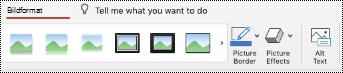 Knappen alternativ text i menyfliksområdet för en bild i PowerPoint för Mac.