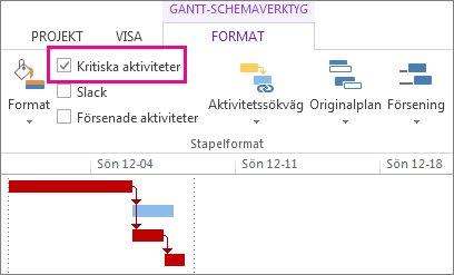 Kryssrutan Kritiska aktiviteter i menyfliksområdet och markerade Gantt-staplar i Project 2013