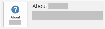 Skärmbild av knappen Om Office för en MSI-installation. Det ingår inget versions- eller byggenummer