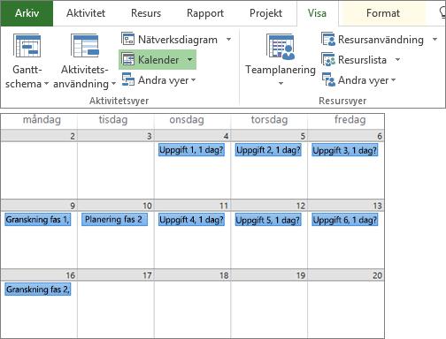 Sammansatt skärmbild av grupperna Aktivitetsvyer och Resursvyer på fliken Visa och en projektplan i kalendervyn.