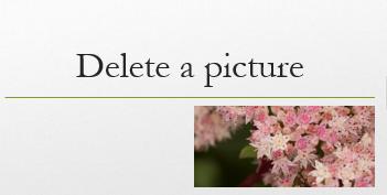 Bilden som du markerat tas bort.