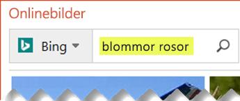 Skriv sökord som beskriver ClipArt-objektet som du vill hitta